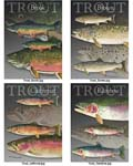 Trout Set of Four